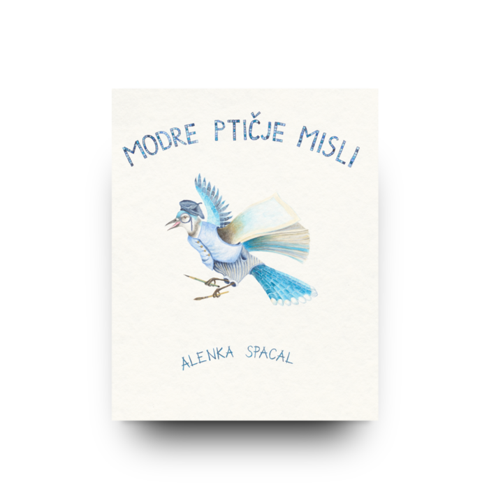 Modre ptičje misli